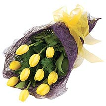 Bouquet of Tulips: Send Flowers to Sydney