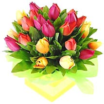 Tulip Box: All Flowers