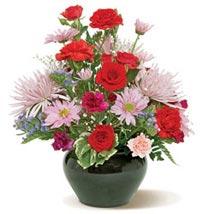 Pretty Palette CND: Send Birthday Flowers to Canada