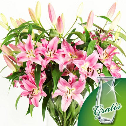 10 pink white Lilies in a bunch