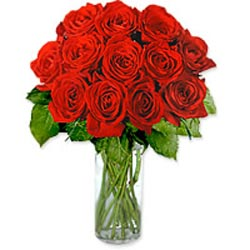 Dozen Roses in a Vase Gre