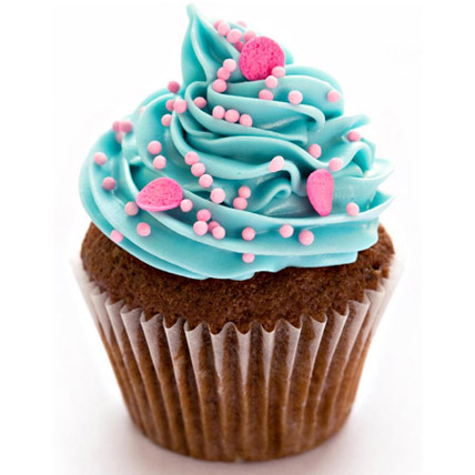 12 Blue and Pink Fantasy Cupcakes by FNP