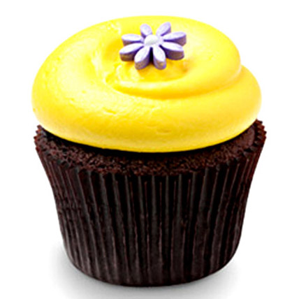 6 Sunshine Chocolate Cupcakes by FNP
