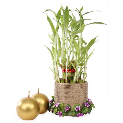 Good Luck Bamboo Combo