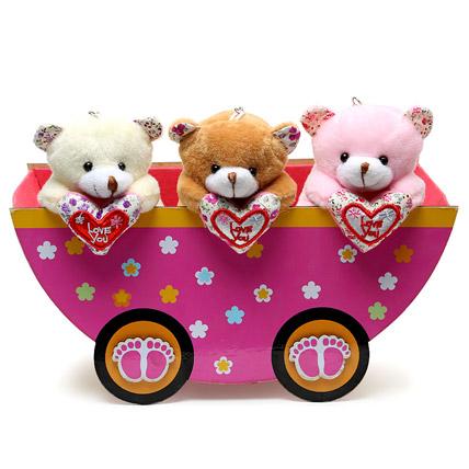 On the Go Teddy