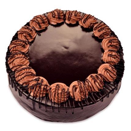 Yummy Special Chocolate Rambo Cake 2kg Eggless