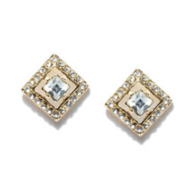 Clear White Stone Studded Earrings:  Women Accessory Gifts