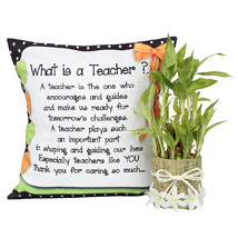 Cushion With Lucky Bamboo:  Good Luck Plants for Teachers Day