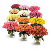 Entire Roses from Garden: Premium Gifts