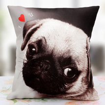 Loving the Pet Personalized Cushion: Cushions for anniversary