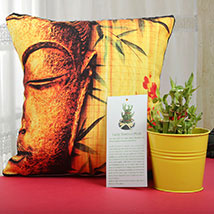 Luck With Cushion: Lucky Bamboo for Him
