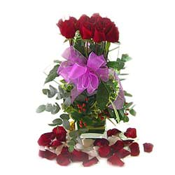 12 Roses in vase Arrangement MAL