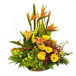 Basket of Mixed seasonal flowers