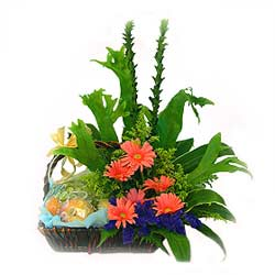 Fruit n Flowers Basket with Pink Gerberas MAL
