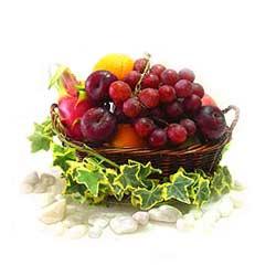 Mixed Fruits Basket MAL