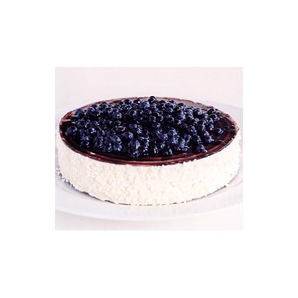 Blueberry Cheesecake SNG
