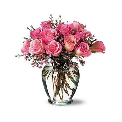 A Pretty Pink Dozen