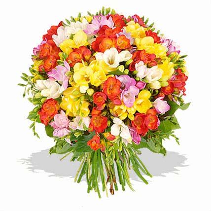 Freesias Bouquet