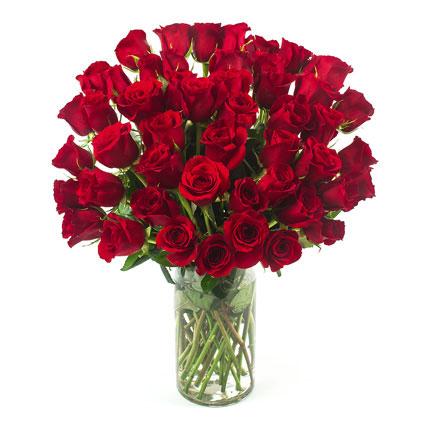 50 Long Stem Red Roses