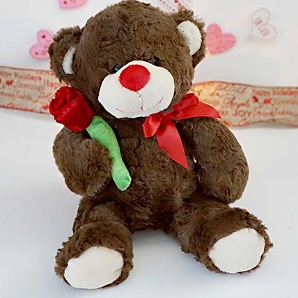 Accept my Rose Teddy Bear