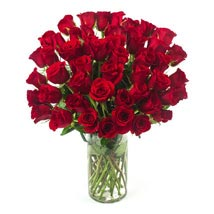 Send Gifts to New York Online | Gift Delivery in New York - Ferns ...