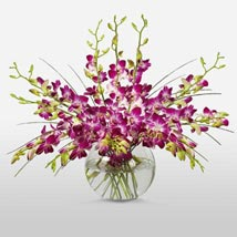 Purple Orchids in Vase: Send Orchids to USA